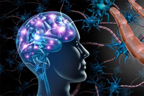sakro neurológica